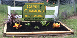 Capri Commons